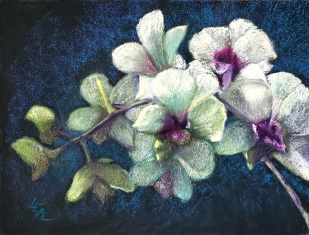 Orchids on Pandora by artist Anna Lisa Leal